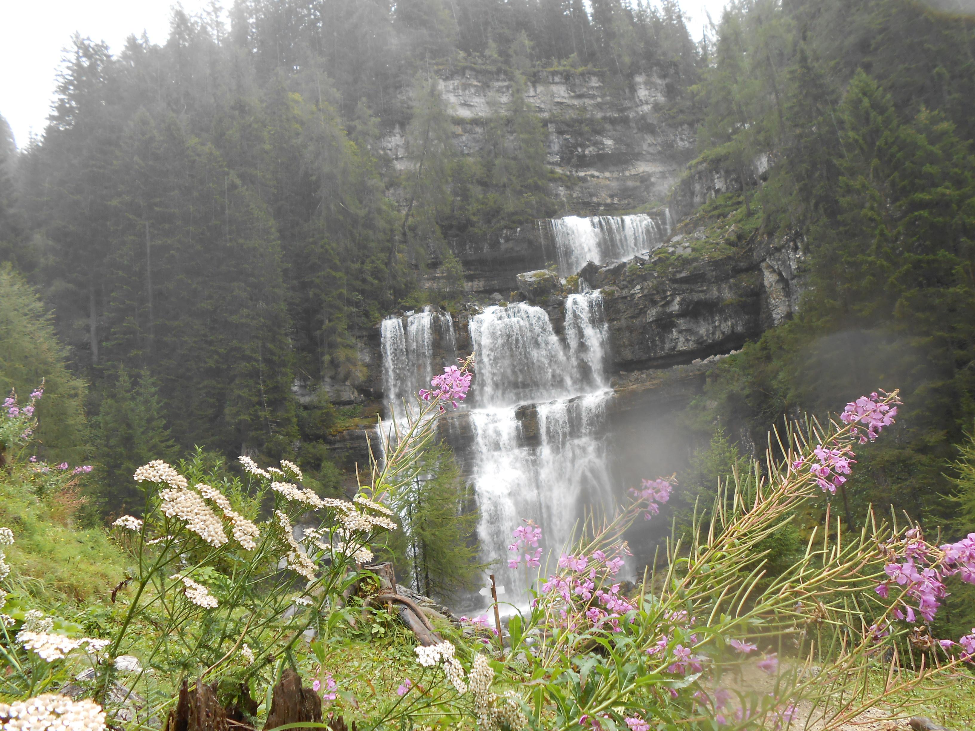 Wasserfall mit Blumen im Vordergrund
